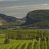 okanagan_070614_0849