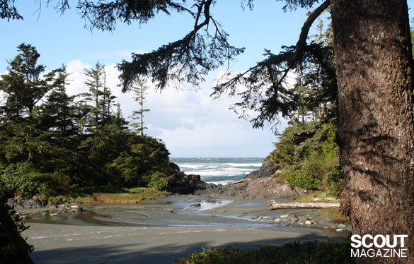 Tofino-2010-272