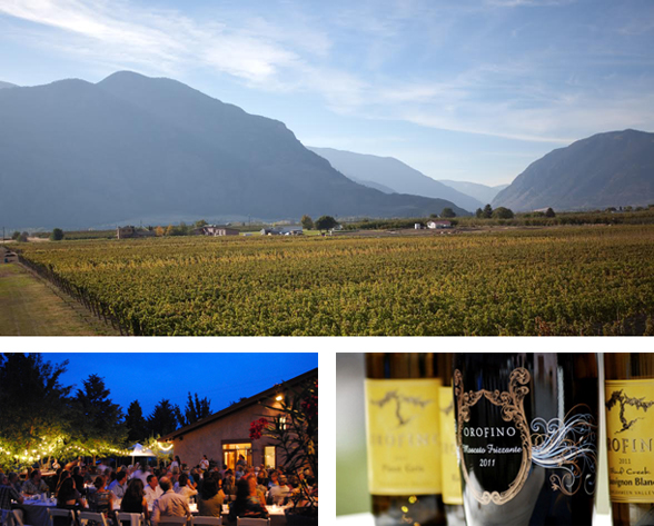 Orofino is located at 2152 Barcelo Road in beautiful Cawston, BC V0X 1C2 | (250) 499-0068 | www.orofinovineyards.com