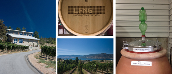 Laughing Stock Vineyards is located at 1548 Naramata Road in Penticton, BC | 250-493-8466 | www.laughingstock.ca