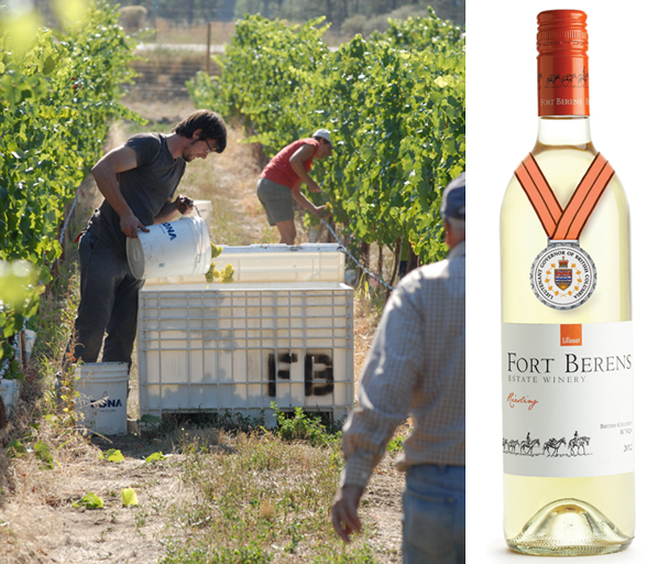 Fort Berens Estate Winery is located at 1881 Highway 99 North in Lillooet, BC | 250-256-7788 | fortberens.ca